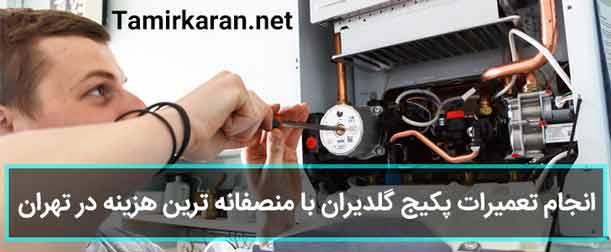 ارائه منصفانه ترین قیمت تعمیر پکیج گلدیران در تهران